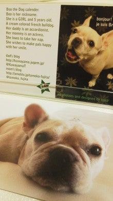 藤田朋子オフィシャルブログ「笑顔の種と眠る犬」Powered by Ameba-2011111416390000.jpg
