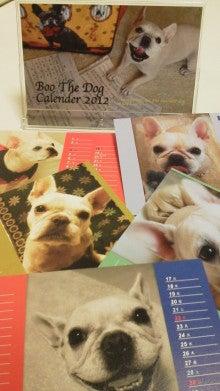 藤田朋子オフィシャルブログ「笑顔の種と眠る犬」Powered by Ameba-2011111416350000.jpg