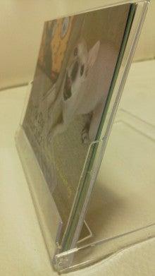 藤田朋子オフィシャルブログ「笑顔の種と眠る犬」Powered by Ameba-2011111416360000.jpg