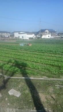 野菜職人 直接販売と他品目栽培の達人-111104_1129~02.jpg