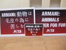 動物たちのメッセージ