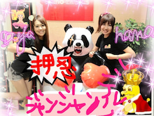 sayaka's blog-image.jpeg