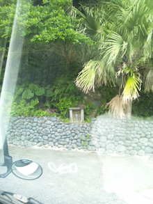 奄美のCD屋 サウンズパル ~ジャズ,ブルース,ワールド,島唄 ect...~-111117_142236.jpg