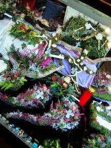 オカメインコのももちゃんと花教室と旅日記-111117_164825.jpg