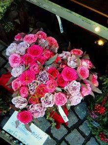 オカメインコのももちゃんと花教室と旅日記-111117_164650.jpg
