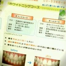 新宿御苑歯科