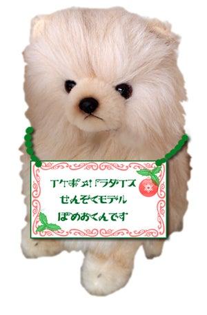 ★イケポメパラダイス★