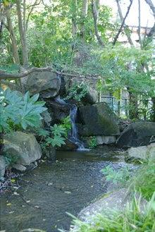 毎日はっぴぃ気分☆-小滝