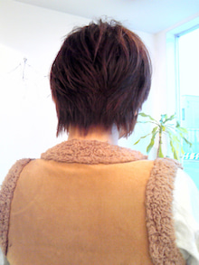 Peas healing-NEC_0866.jpg