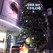 クリスマスツリー@新…