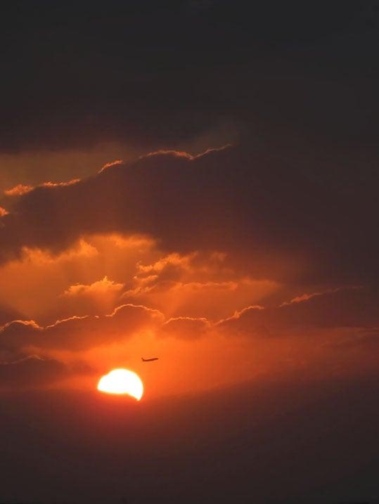 ケロケロの散歩道-夕陽