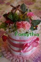 $Forsythia~お花とお茶のある暮らし~