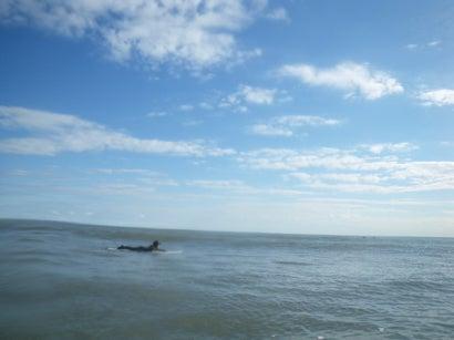 東京発~手ぶらで誰でも1からサーフィン!キィオラ サーフスクール&アドベンチャー ブログ-EC20111122220306.jpeg