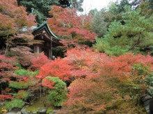赤と黒-毘沙門堂(景観)