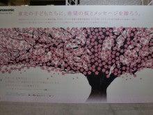 日本平原綾香研究所