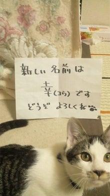 福のボンボン日記-2011112623060000.jpg