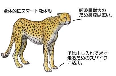 川崎悟司 オフィシャルブログ 古世界の住人 Powered by Ameba-チーター