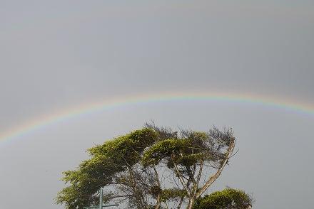 $ハワイ発 魂のエステ  神様タッチ ロミロミ ハワイアンマナ☆虹の街ホノルルより愛をこめて
