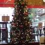 クリスマスツリーセッ…