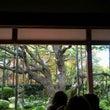 京都に行ってきました…
