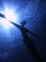★コスメル島ダイビング