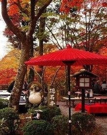 京都案内処~舞妓倶楽部 Official Blog~-硯石亭紅葉