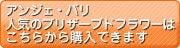 大阪|プリザーブドフラワーレッスンと販売 アンジェ・パリ