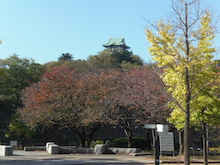 Road to SAROMAN BLUE-大阪城