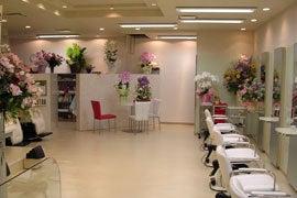 徳島 美容室 atelier wise BLOG(ブログ)