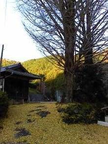 キラッと奥三河観光ナビ STAFF BLOG-P2011_1204_153807.JPG