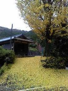 キラッと奥三河観光ナビ STAFF BLOG-P2011_1202_132542.JPG