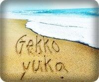 gekko's staffのブログ