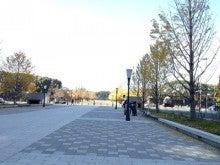 桜並木の樹(こ)の下で-ipodfile.jpg