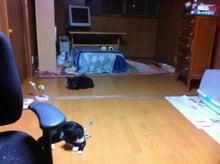 Akanekoのブログ