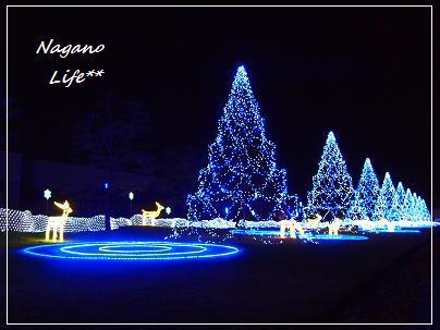 Nagano Life**-樫山工業イルミネーション