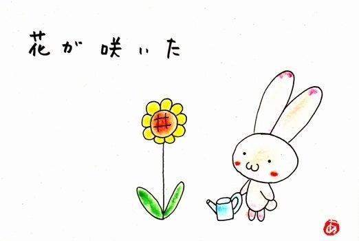 しあわせのもと「ここ」にあります-花が咲いた