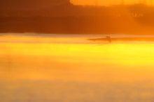タクミの野鳥ブログ-デジタルカメラで野鳥撮影-雲河