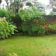 バリ島は雨季到来でし…