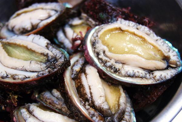 食べて飲んで観て読んだコト+レストラン・カザマ-活エゾアワビ