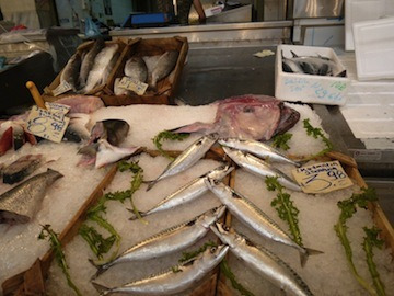 鮮魚市場2