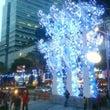 花咲くシンガポールの…
