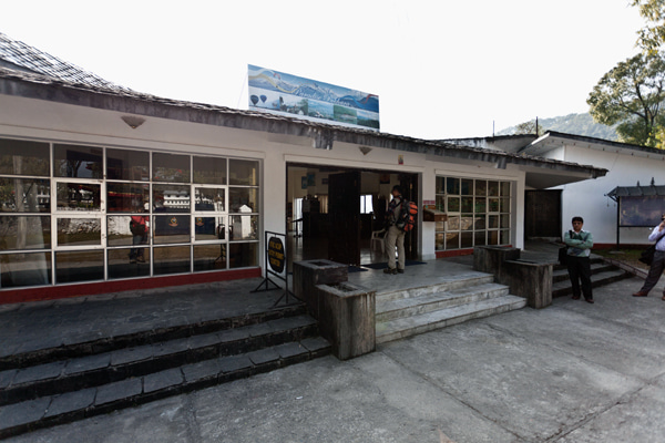 ベンガル猫のひめちゃん-ネパール観光局