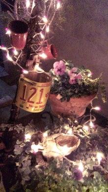 オカメインコのももちゃんと花教室と旅日記-111223_170544.jpg