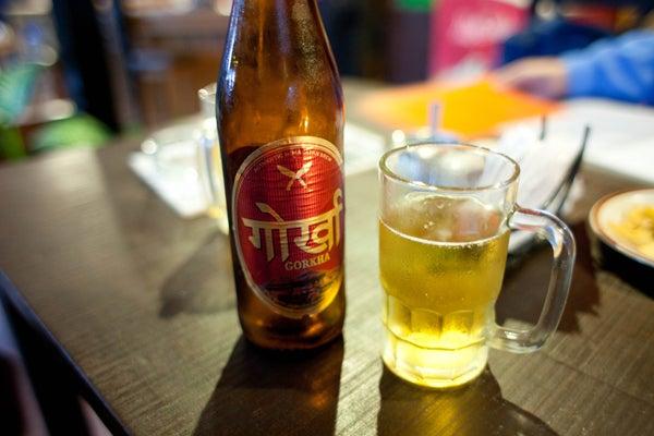 ベンガル猫のひめちゃん-ゴルカビール