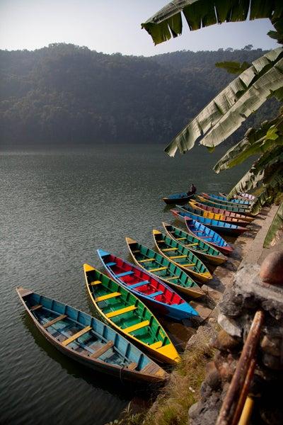 ベンガル猫のひめちゃん-ペワ湖
