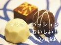 マンゴーのチョコレート 通販