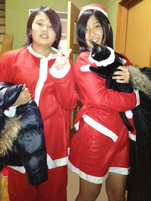 タイの日本人-タイの日本人 捨て猫 サンタコスプレ