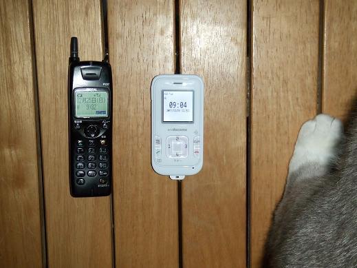 ネコに真珠・豚にゴハン-携帯電話