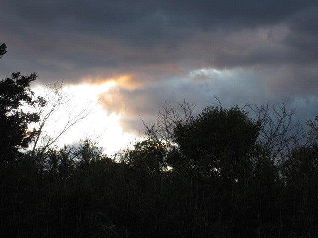 神夢里の夕日