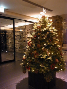 神戸のカラーリスト スタイリスト  トータル素敵プロデューサー☆みつこのブログ-クリスマスツリー